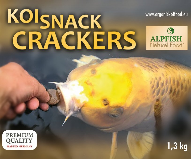 Koi Snack Crackers 3,5 litri (1,3kg) gallegiante - NEW